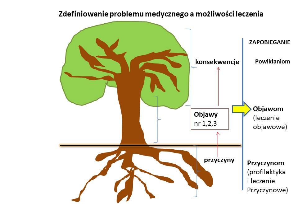 drzewo problemu