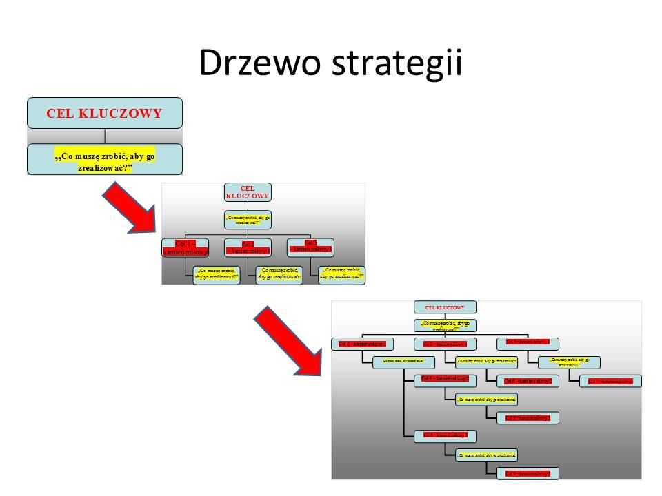 drzewo strategii