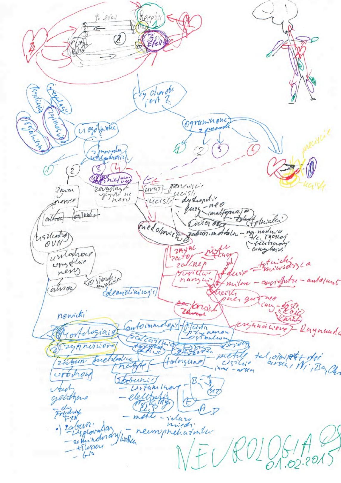 Neurologia-moj algorytm